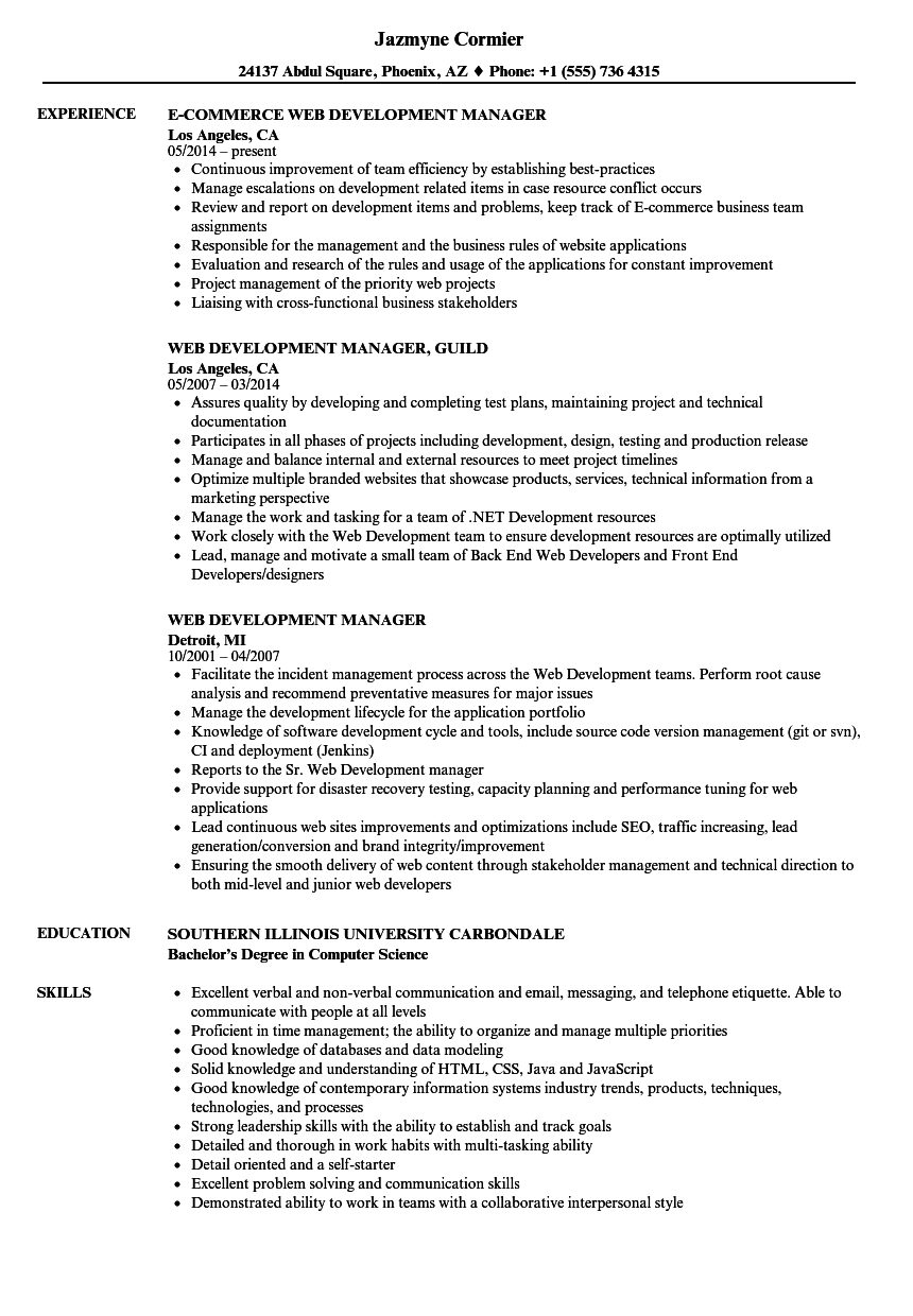 Download Web Development Manager Resume Sample As Image File