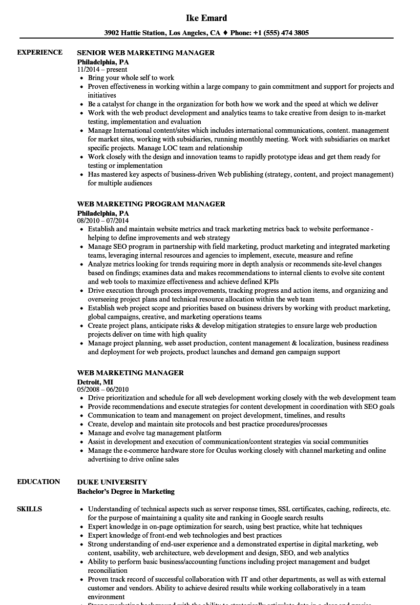 download web marketing manager resume sample as image file web marketing manager sample resume - Marketing Manager Sample Resume