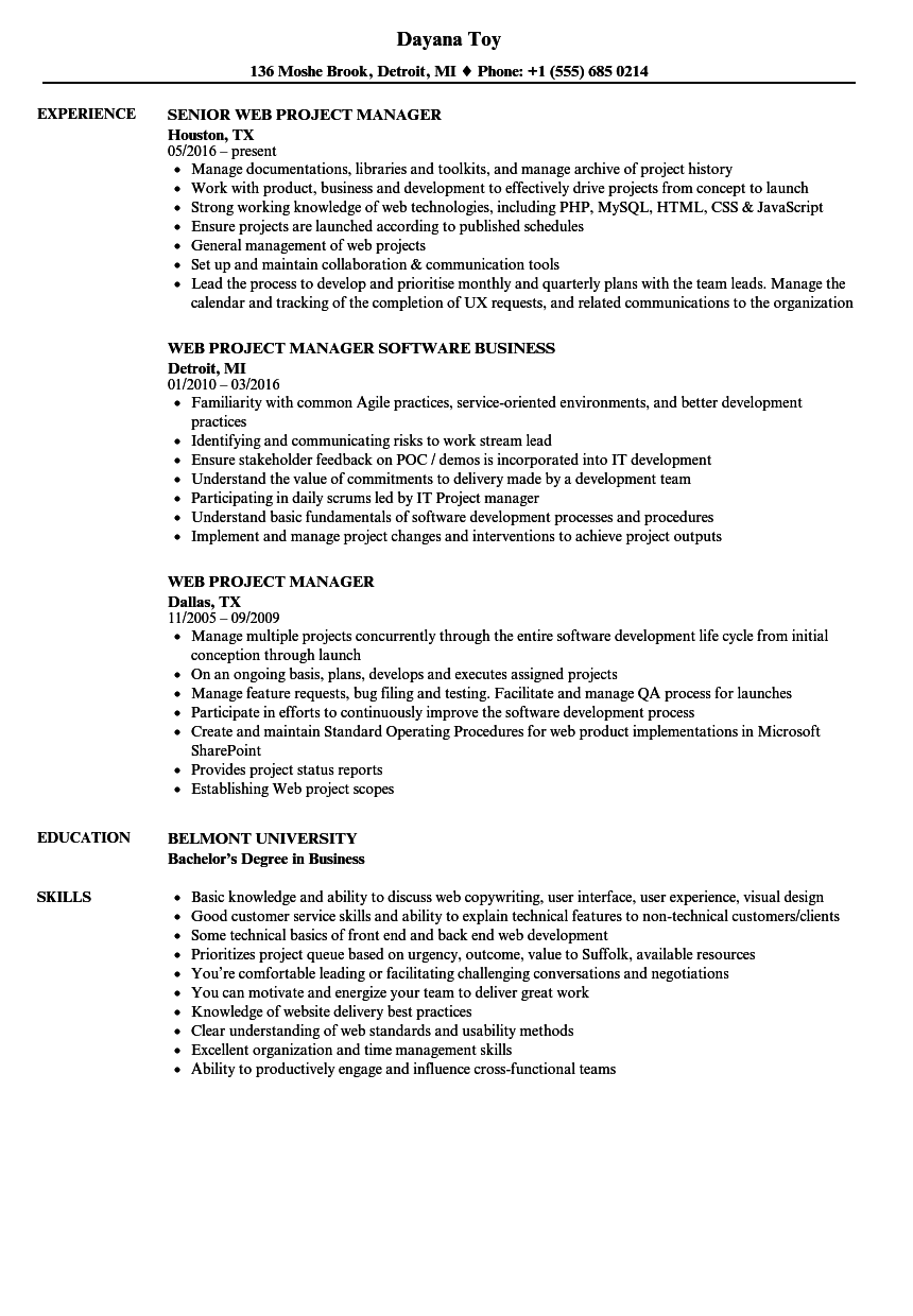 Web Project Manager Resume Samples Velvet Jobs