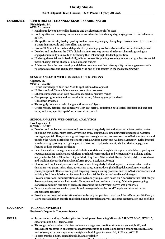 web senior resume samples