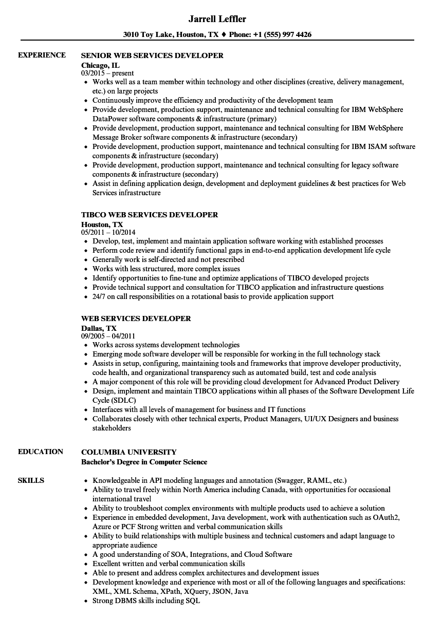 Web Services Developer Resume Samples | Velvet Jobs
