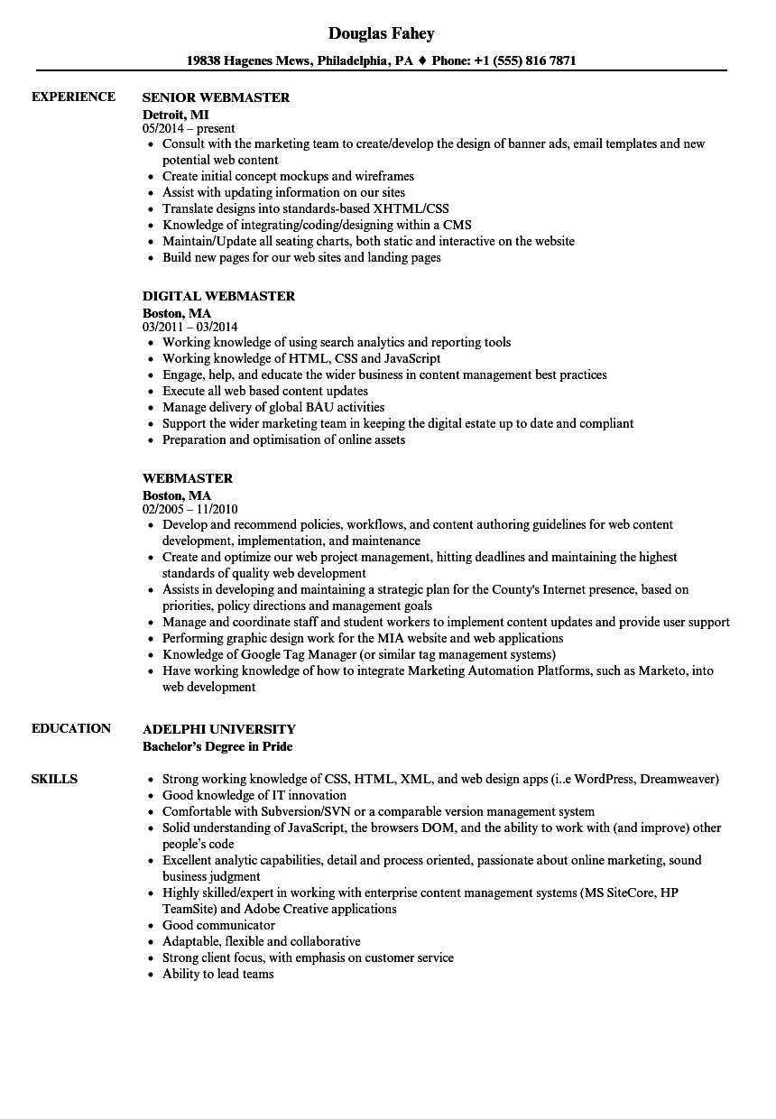 webmaster resume samples velvet jobs