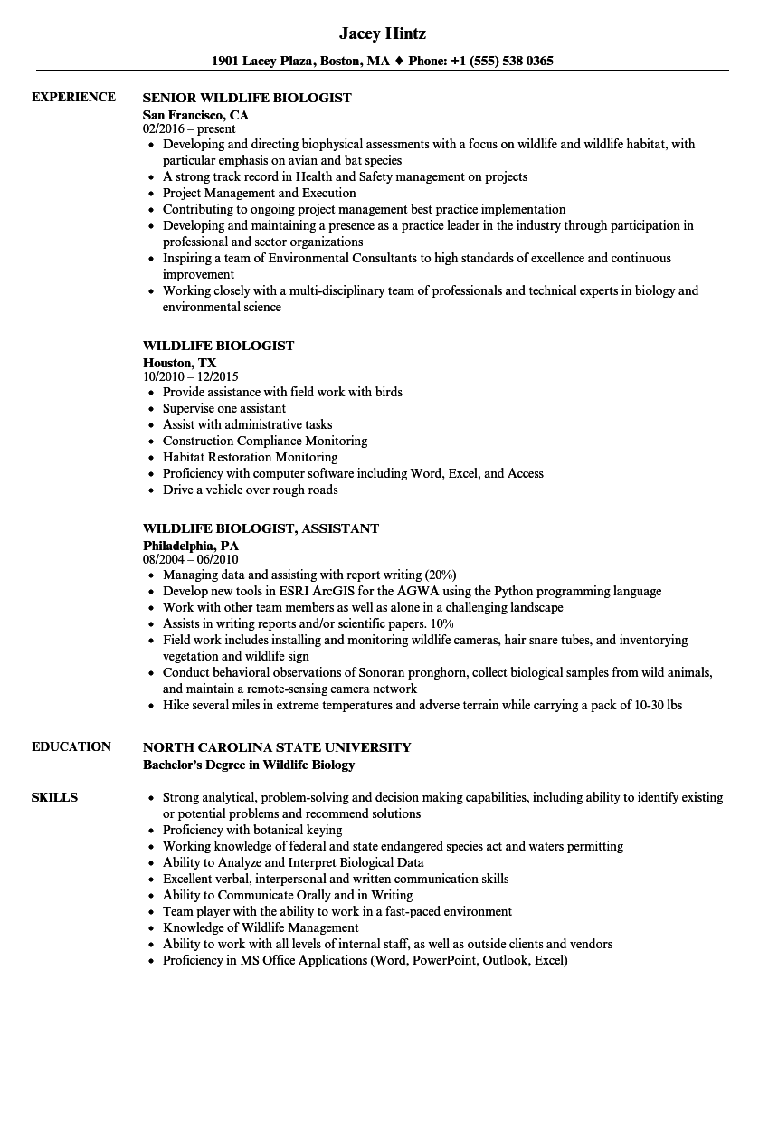 Download Wildlife Biologist Resume Sample As Image File