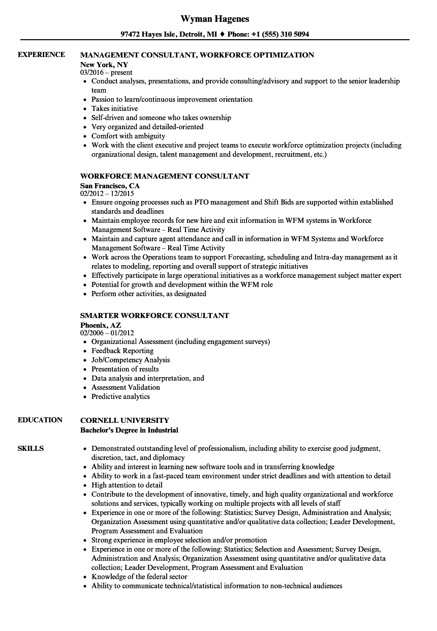 workforce consultant resume samples velvet jobs