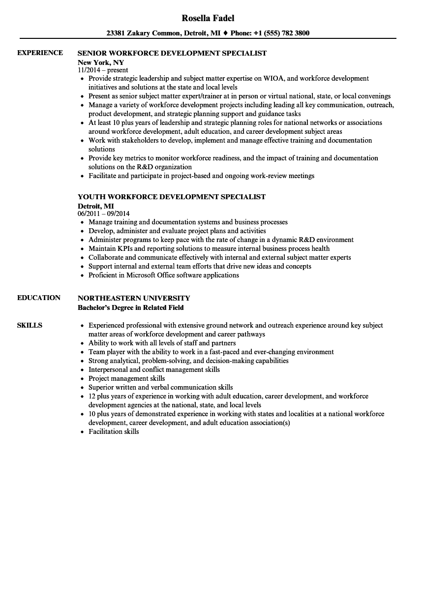 Workforce Development Director Resume